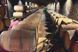 Wijnunie Vlaanderen Wijnimport Uniek aanbod