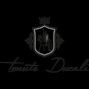 De Wijnunie Vlaanderen onze domeinen logo van Tenute Ducali